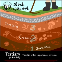 Word_Tertiary_Rev1